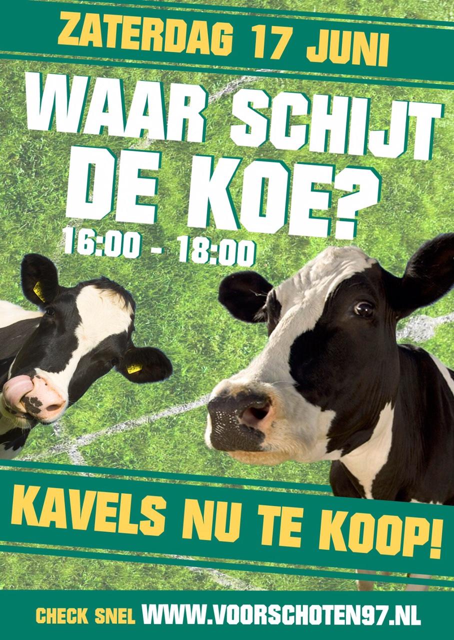 koeien te koop voor export